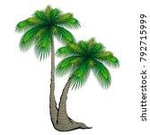 cartoon palm tree. | Shutterstock .eps vector #792715999