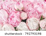 elegant bouquet of a lot of... | Shutterstock . vector #792793198