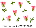 pattern with soft red... | Shutterstock . vector #792793888