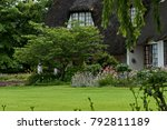 garden with flowers and tree by ...   Shutterstock . vector #792811189