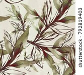 peony branch in watercolor and... | Shutterstock . vector #792819403