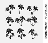 set of silhouettes of palm... | Shutterstock .eps vector #792846820