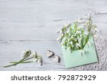 snowdrops in an envelope on a... | Shutterstock . vector #792872929