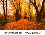 Beautiful Autumn Landscape In...