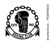 boxing club. emblem with boxing ... | Shutterstock .eps vector #793049833