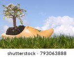 Wooden Shoe  Clog With Bonsai...