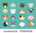 collection of cats... | Shutterstock .eps vector #793064506