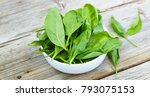 baby spinach in a white bowl on ... | Shutterstock . vector #793075153