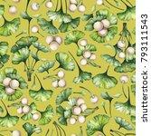 watercolor ginkgo biloba... | Shutterstock . vector #793111543