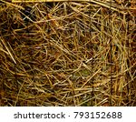 Hay In The Grid. Closeup Of Ha...