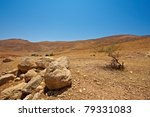 Harsh Mountainous Terrain In...