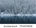 Snowy Trees In The Alpine Lake...