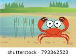 crab next to pond | Shutterstock .eps vector #793362523