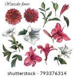 Flowers Set Of Watercolor...