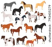 Stock vector horse breeds color flat icons set 793405279