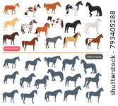 Stock vector horse breeds color flat icons set horse black silhoutte simple icons set 793405288