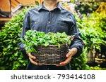 organic gardening. farmers... | Shutterstock . vector #793414108