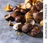 heap of fresh forest porcini... | Shutterstock . vector #793431370
