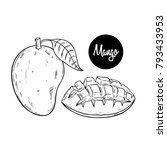 sketch style of manggo fruit on ... | Shutterstock .eps vector #793433953