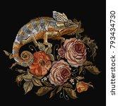 embroidery color chameleons ... | Shutterstock .eps vector #793434730