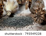 Poppy Seeds And Seedpods