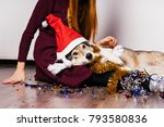 the dog in the new year's cap... | Shutterstock . vector #793580836
