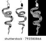outline lampropeltis triangulum ...   Shutterstock .eps vector #793580866