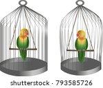 birds parrots lovebirds. cages... | Shutterstock .eps vector #793585726