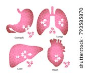 icons of the internal organs of ... | Shutterstock .eps vector #793585870