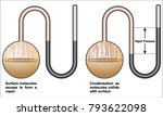 difference between partial... | Shutterstock .eps vector #793622098