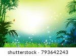 field of fresh green grass palm ... | Shutterstock .eps vector #793642243
