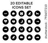 wildlife icons. set of 20... | Shutterstock .eps vector #793657210