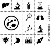 biology icons. set of 13... | Shutterstock .eps vector #793661944