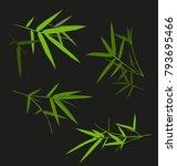 vector illustration of  bamboo...   Shutterstock .eps vector #793695466