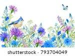 Field Flowers Cornflowers...