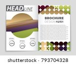 abstract vector layout... | Shutterstock .eps vector #793704328