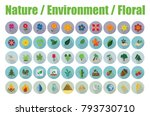 nature  environment and floral... | Shutterstock .eps vector #793730710