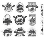 vintage monochrome labels for...   Shutterstock .eps vector #793732219