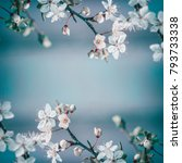 spring frame background with... | Shutterstock . vector #793733338