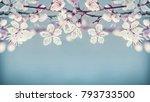 pretty cherry blossom floral... | Shutterstock . vector #793733500