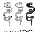 snake cobra illustration for... | Shutterstock .eps vector #793740376