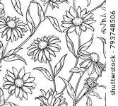echinacea seamless pattern | Shutterstock .eps vector #793748506