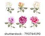watercolor set with different... | Shutterstock . vector #793764190