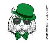 a beautiful tiger with a hat... | Shutterstock .eps vector #793786894