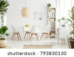 plants and lamp in white dining ... | Shutterstock . vector #793830130