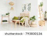 wooden shelves and plant on... | Shutterstock . vector #793830136