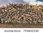 the ecological business of the... | Shutterstock . vector #793832530
