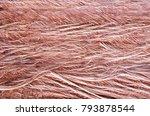 grunge scratch texture on... | Shutterstock . vector #793878544