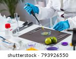 food safety laboratory... | Shutterstock . vector #793926550