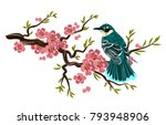 bird sitting on a branch of...   Shutterstock .eps vector #793948906